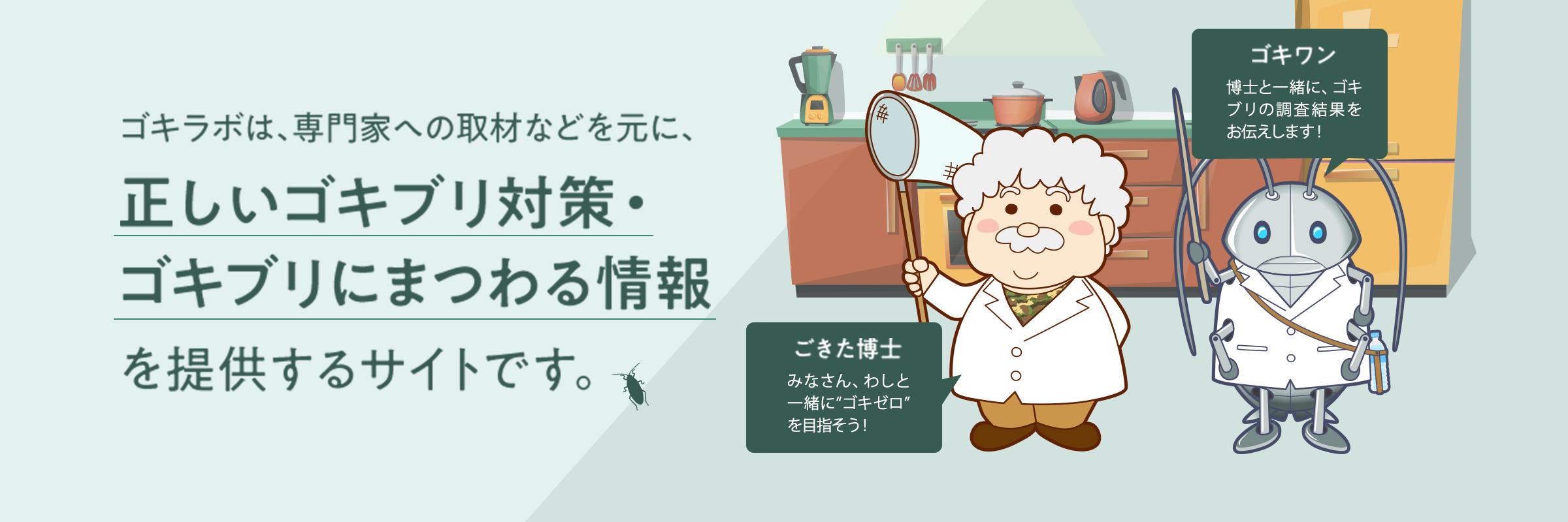 ゴキラボは、専門家への取材などを元に、正しいゴキブリ対策・ゴキブリにまつわる情報を提供するサイトです。