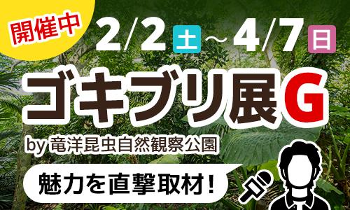 2/2(土)~4/7(日)ゴキブリ展G 開催中