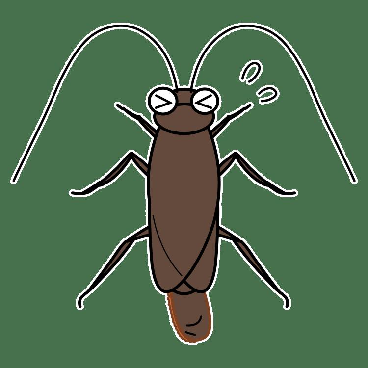 卵をお尻(?)から落とそうといきんでいるゴキブリ(3)