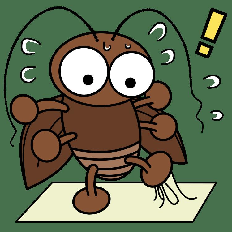 罠に焦るゴキブリ