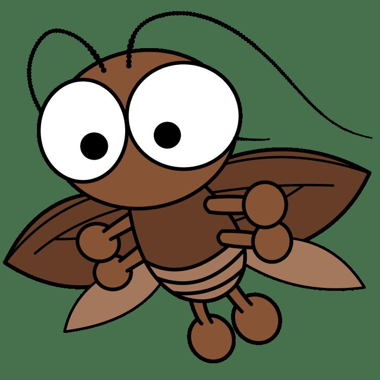 空を飛ぶゴキブリ