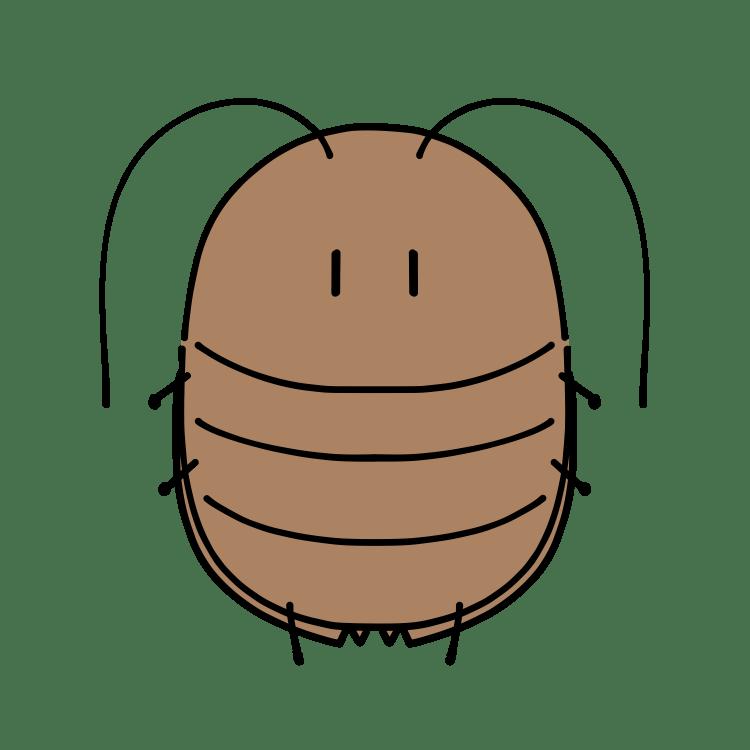 ゆるふわゴキブリ(3)