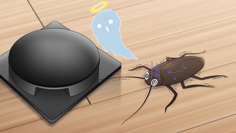 ベイト剤で死ぬゴキブリ