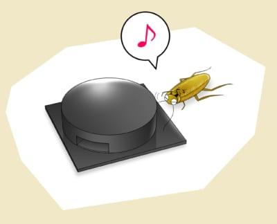 ベイト剤が効かないスーパーゴキブリ