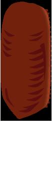 ヤマトゴキブリの卵鞘