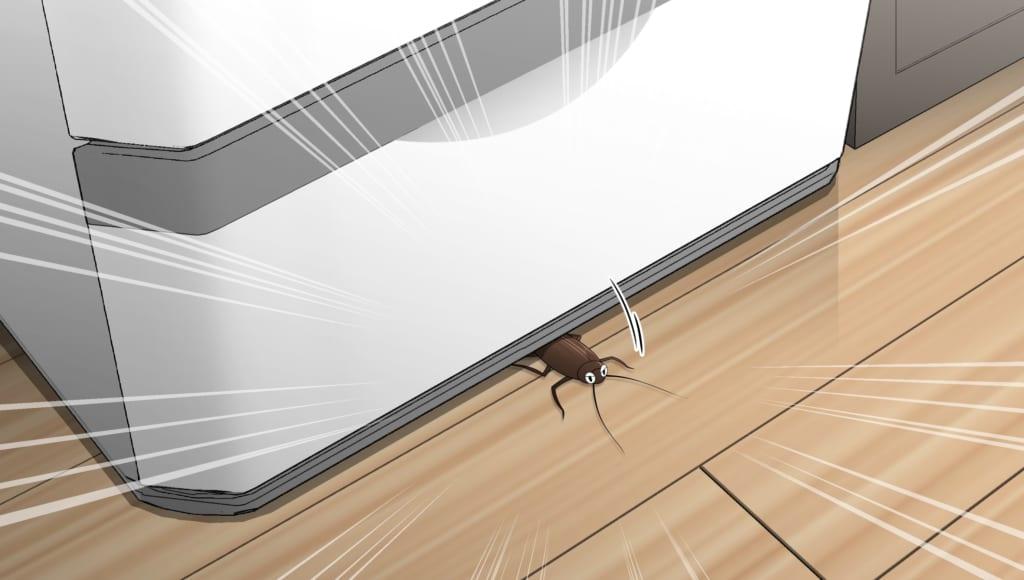 冷蔵庫の下から顔を出すゴキブリ