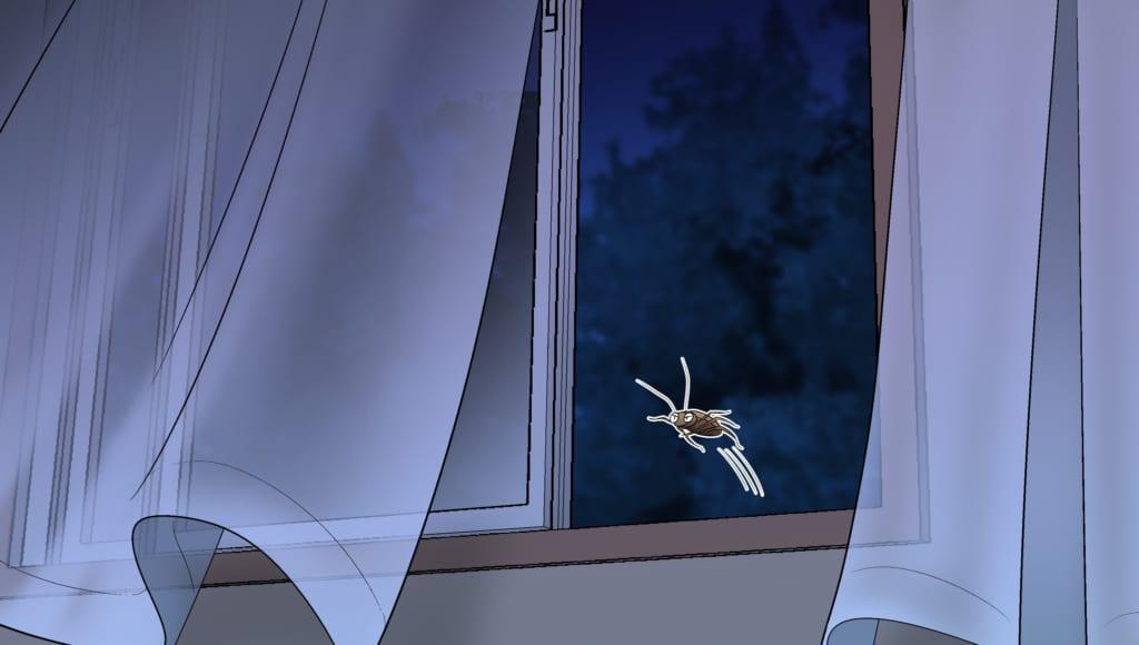 窓から侵入するゴキブリ