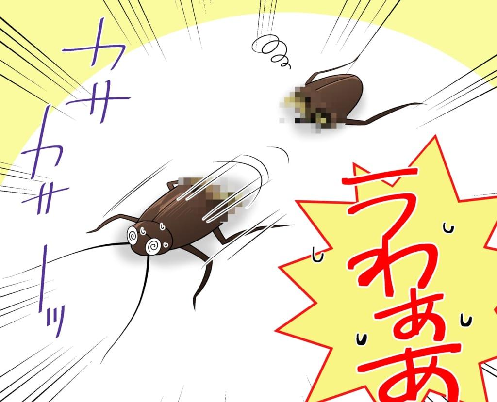 切断されたゴキブリの上半身が動き出す