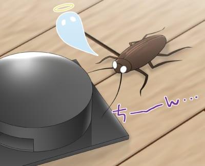 フィプロニル系ベイト剤で死ぬゴキブリ