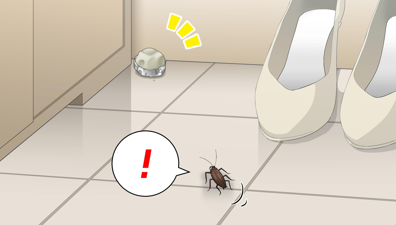 ホウ酸団子に気づくゴキブリ