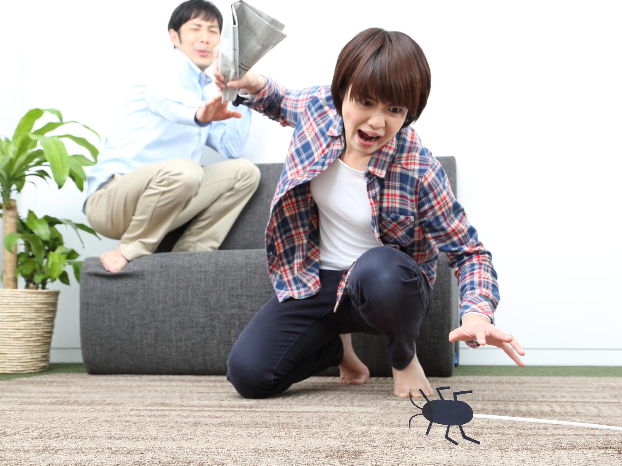 ゴキブリを倒そうとする女性と怖がる男性