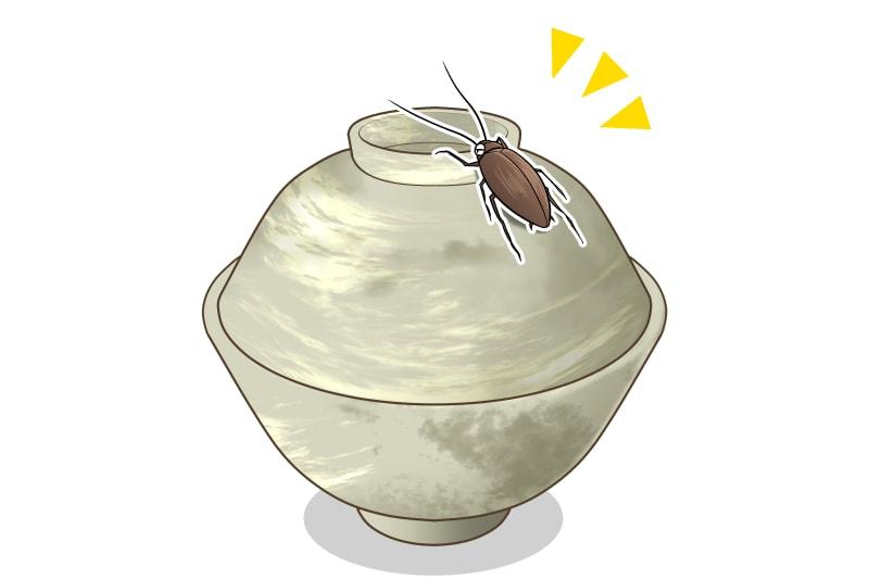 ふたつきのお椀をかじる御器噛(ゴキカブリ)