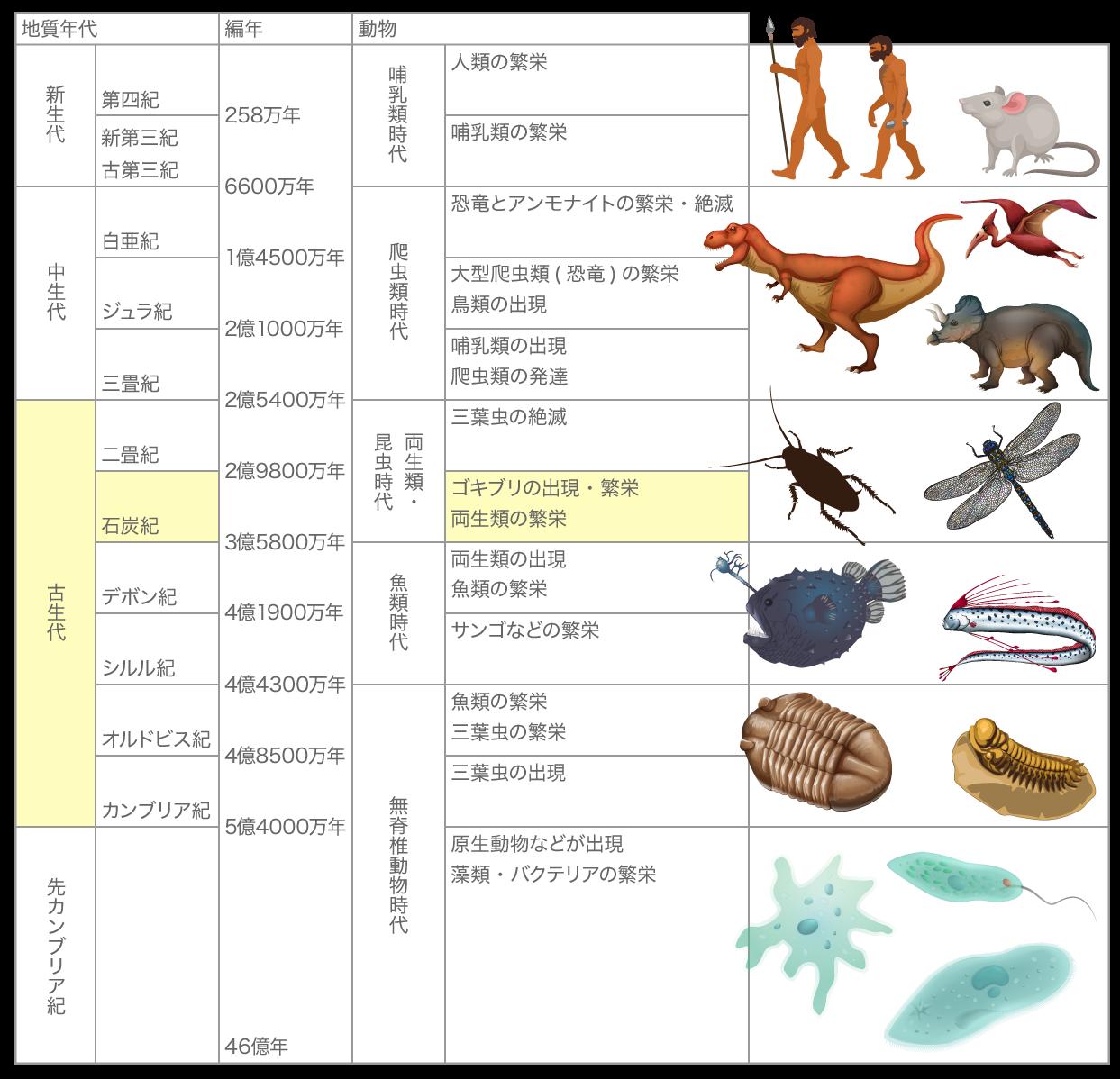 46億年前から258万年前までの生物年表
