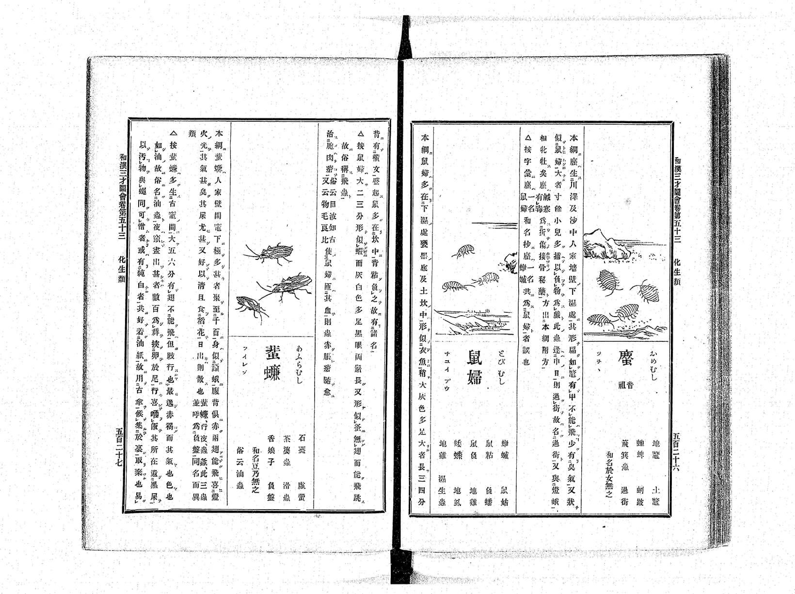 『和漢三才図会』 出典/国立国会図書館ウェブサイト