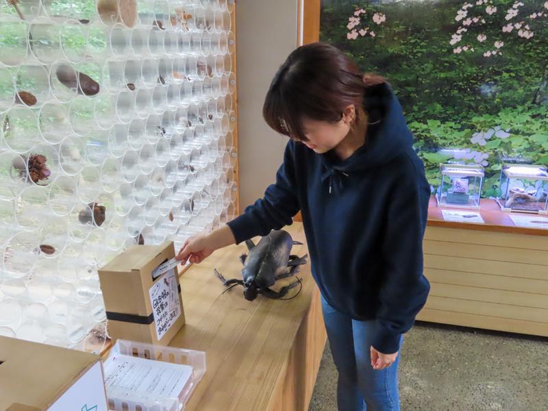「GKB48総選挙」に投票しているゴキラボ編集部・和田の様子
