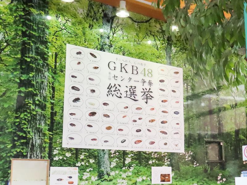 「GKB48総選挙」の横断幕
