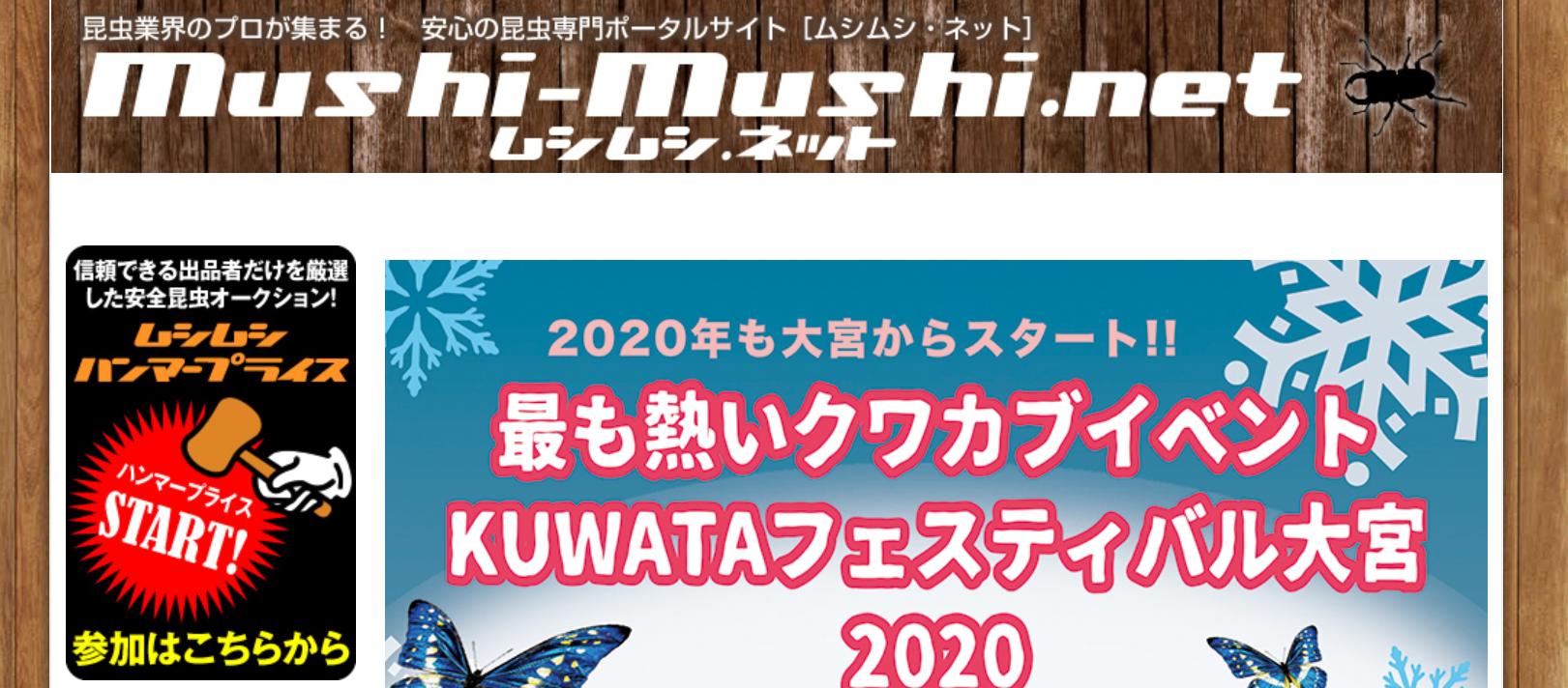 KUWATAフェスティバルサイト画像
