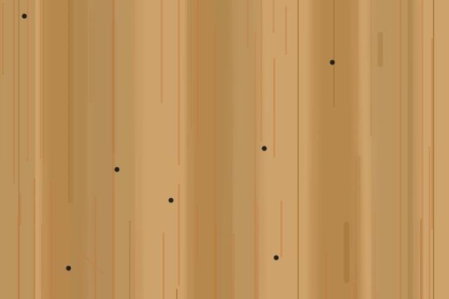 アメリカカンザイシロアリの蹴り出し穴