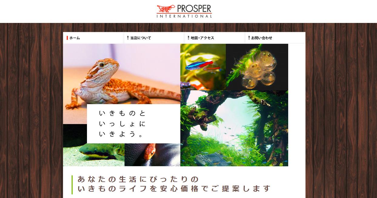 Prosper Internationalトップ画像