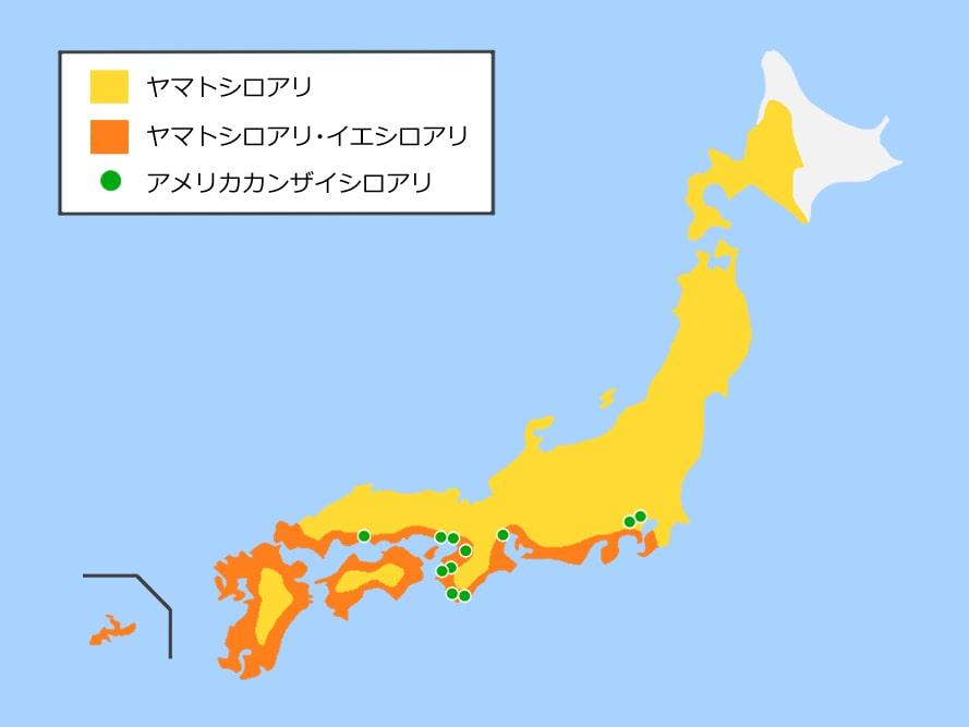 ヤマトシロアリ・イエシロアリ・アメリカカンザイシロアリの分布図