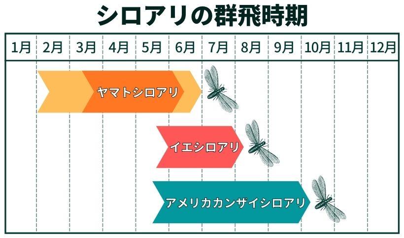 シロアリの種類別群飛時期