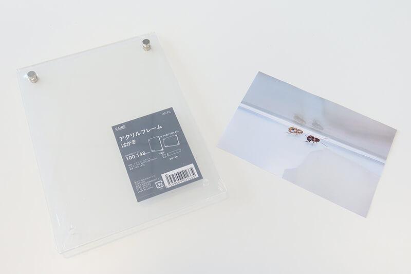 「アクリルフレーム はがき」とゴキブリの写真