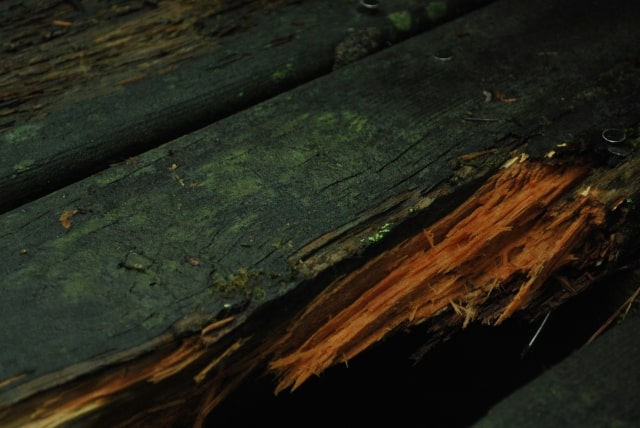 傷んだ木材