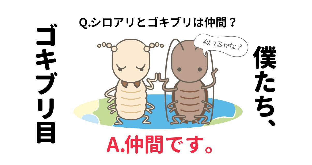シロアリとゴキブリが仲良く手をつないでいるイラスト