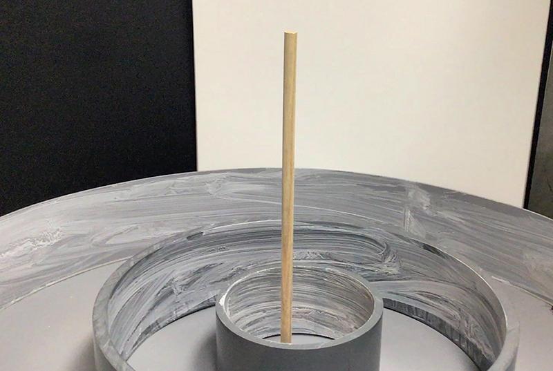 クロゴキブリの飛翔実験を行うための実験装置の写真