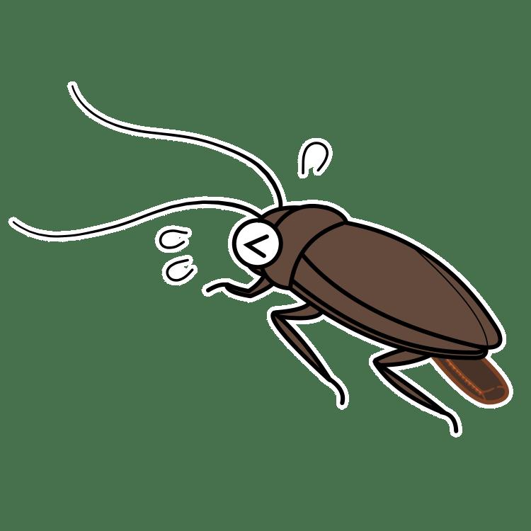 ゴキブリが産卵しているイラスト