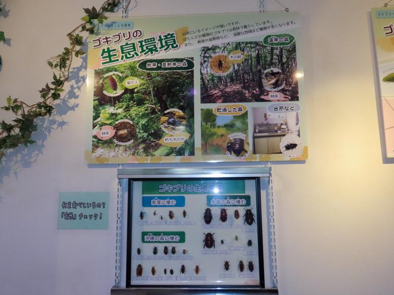 ゴキブリの生息環境を紹介するパネル展示