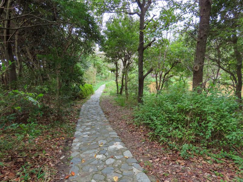 磐田市竜洋昆虫自然観察公園のビオトープ