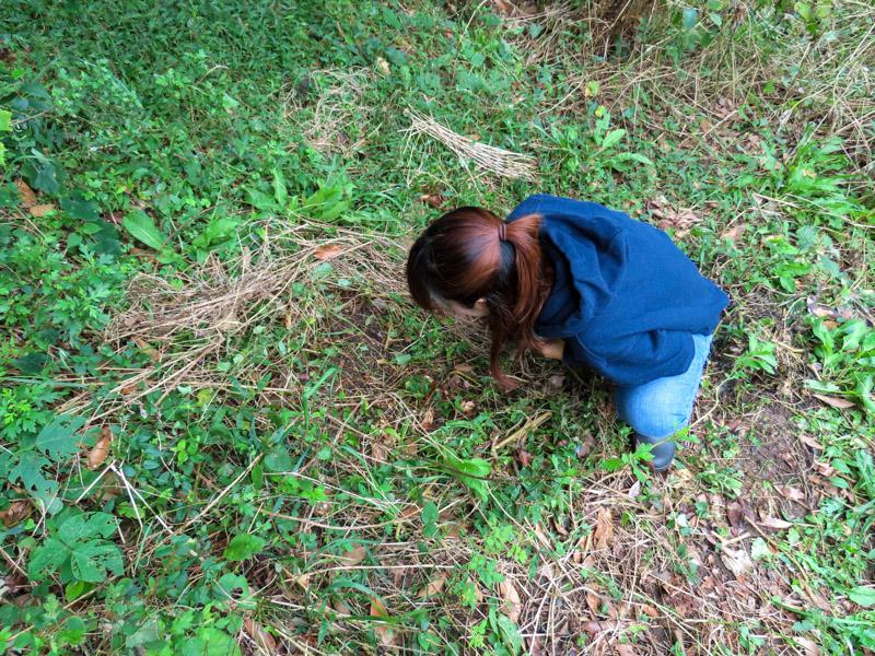 ゴキブリを探すゴキラボ編集部の和田