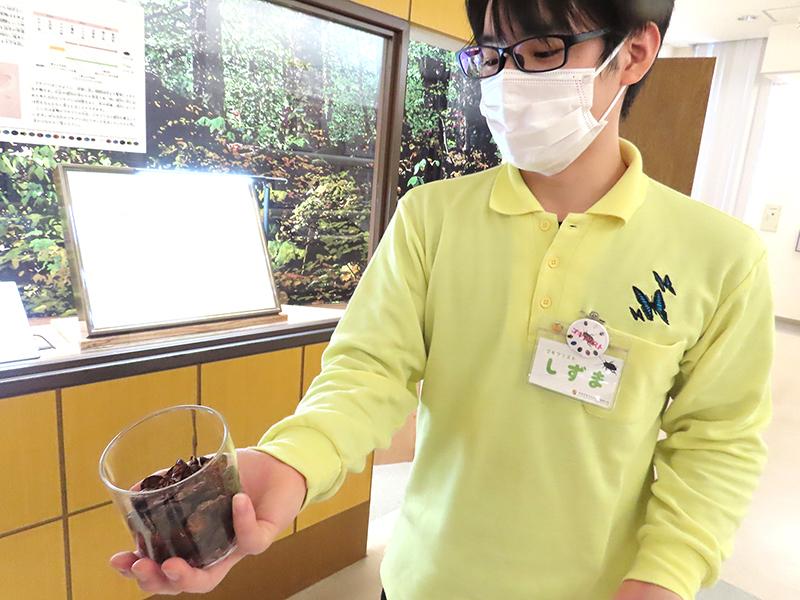 「䗪虫」を差し出す柳澤さん
