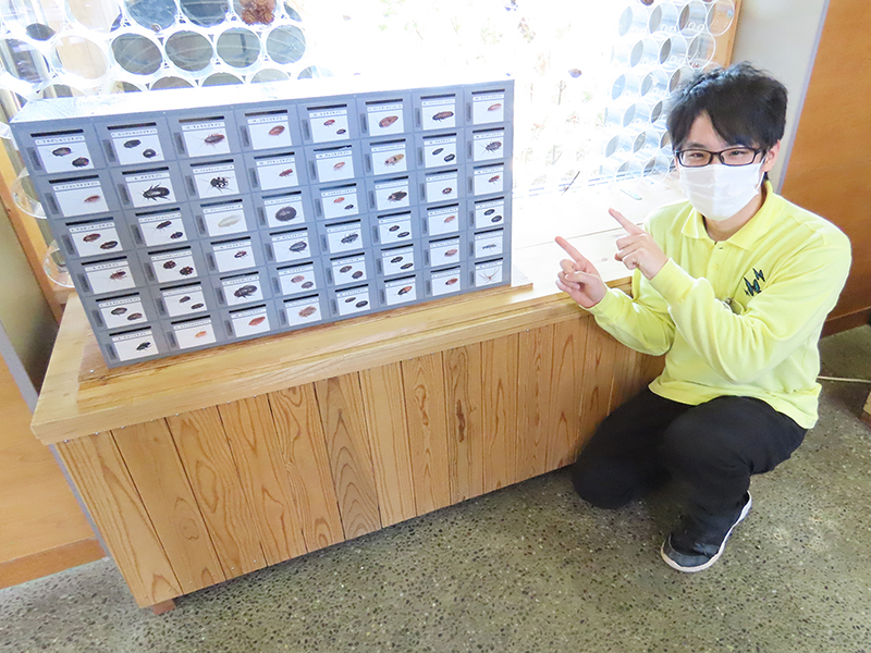 GKB総選挙の投票箱と柳澤静磨さん
