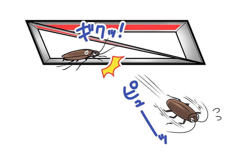粘着シートに気づいて逃げるゴキブリ