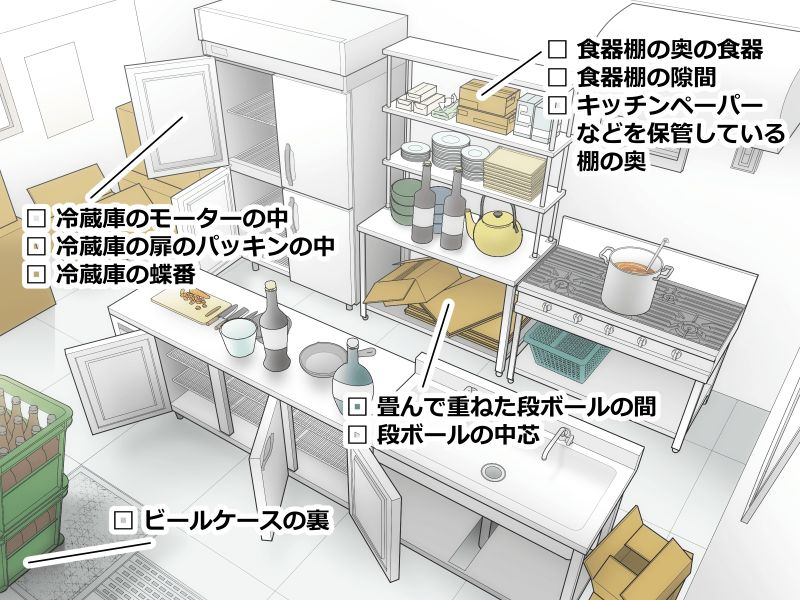 チャバネゴキブリの生息場所を示した厨房のイラスト