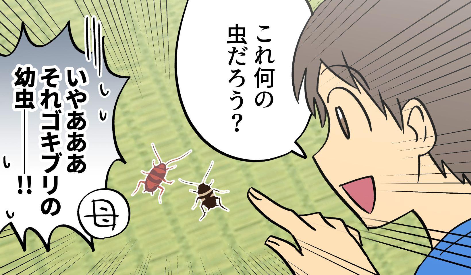 家の中でゴキブリの幼虫を発見した男の子のイラスト