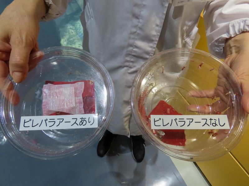 ピレパラアースを入れたプラスチックケース(左)と入れていないプラスチックケース(右)