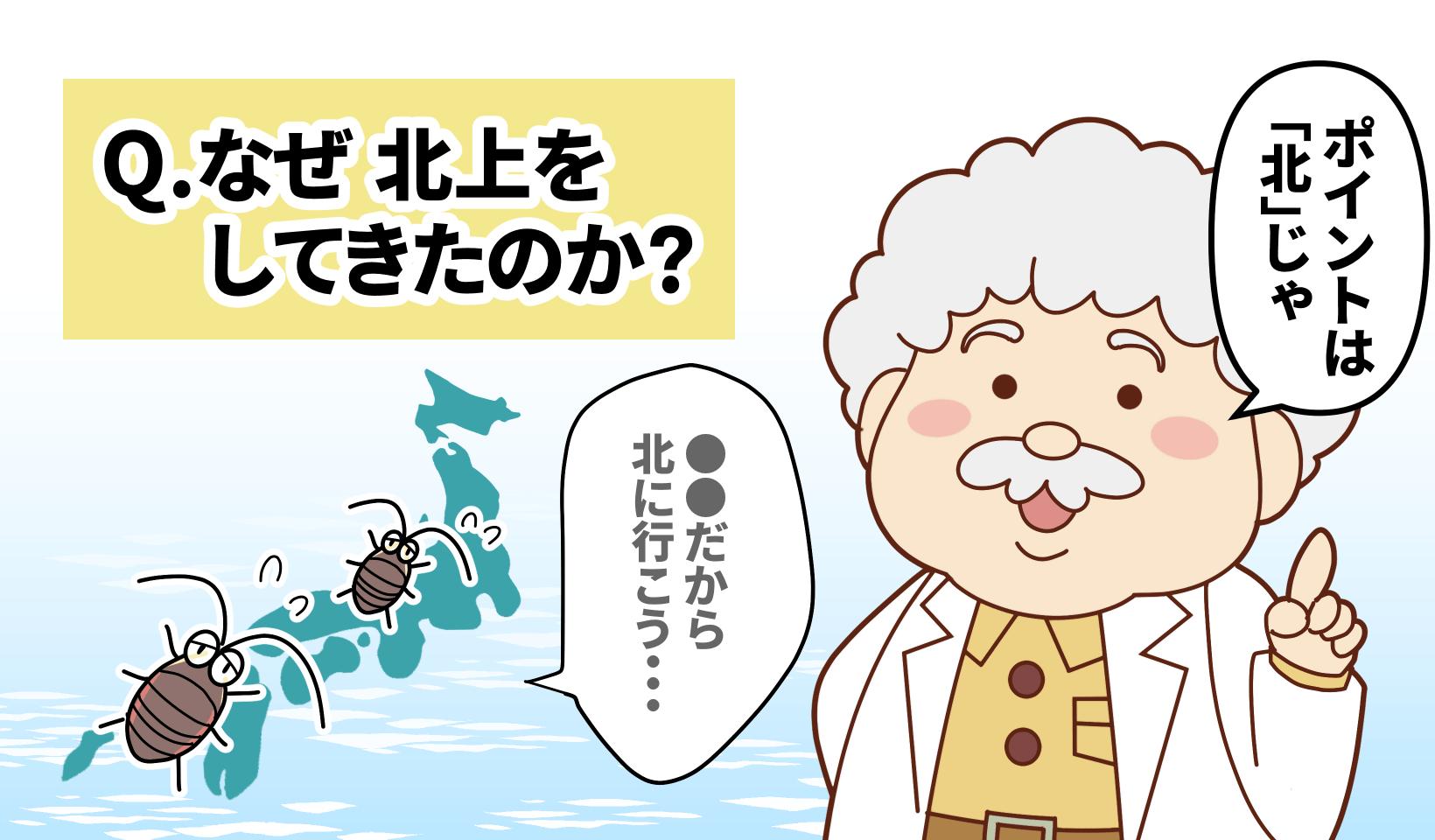 なぜゴキブリは北上してきたのか?