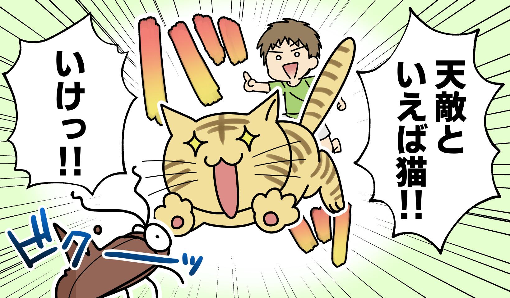 ゴキブリに飛びつく猫