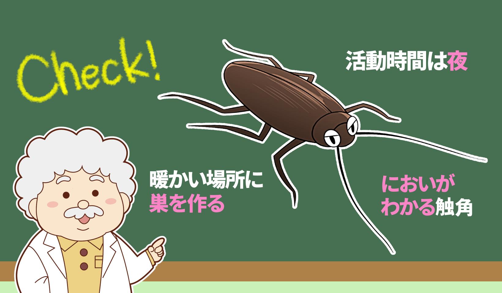 ゴキブリについて説明するごきた博士