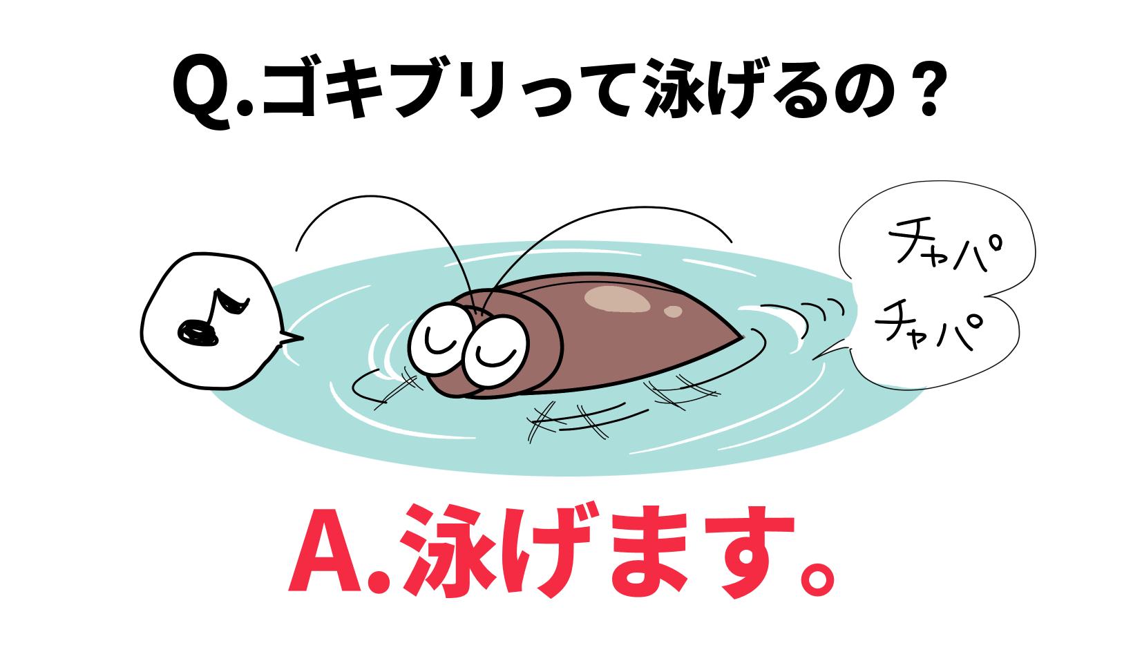 泳ぐゴキブリ