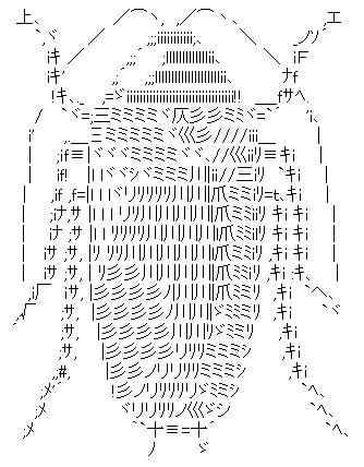 長い触角、ちらりと見える尾肢を持つゴキブリAA
