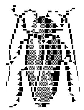 黒くてつやのあるゴキブリAA