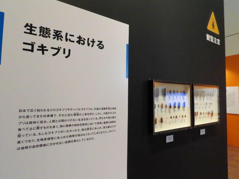「Gの部屋」の展示風景