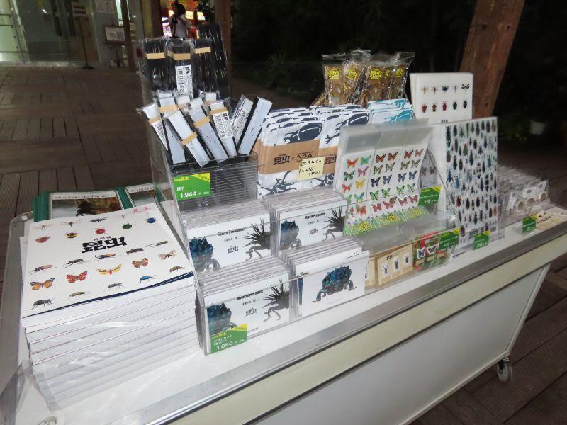 お土産コーナーで販売している特別展「昆虫」のグッズ